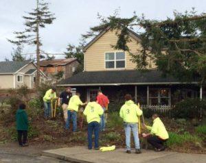 treeplanting-11-16